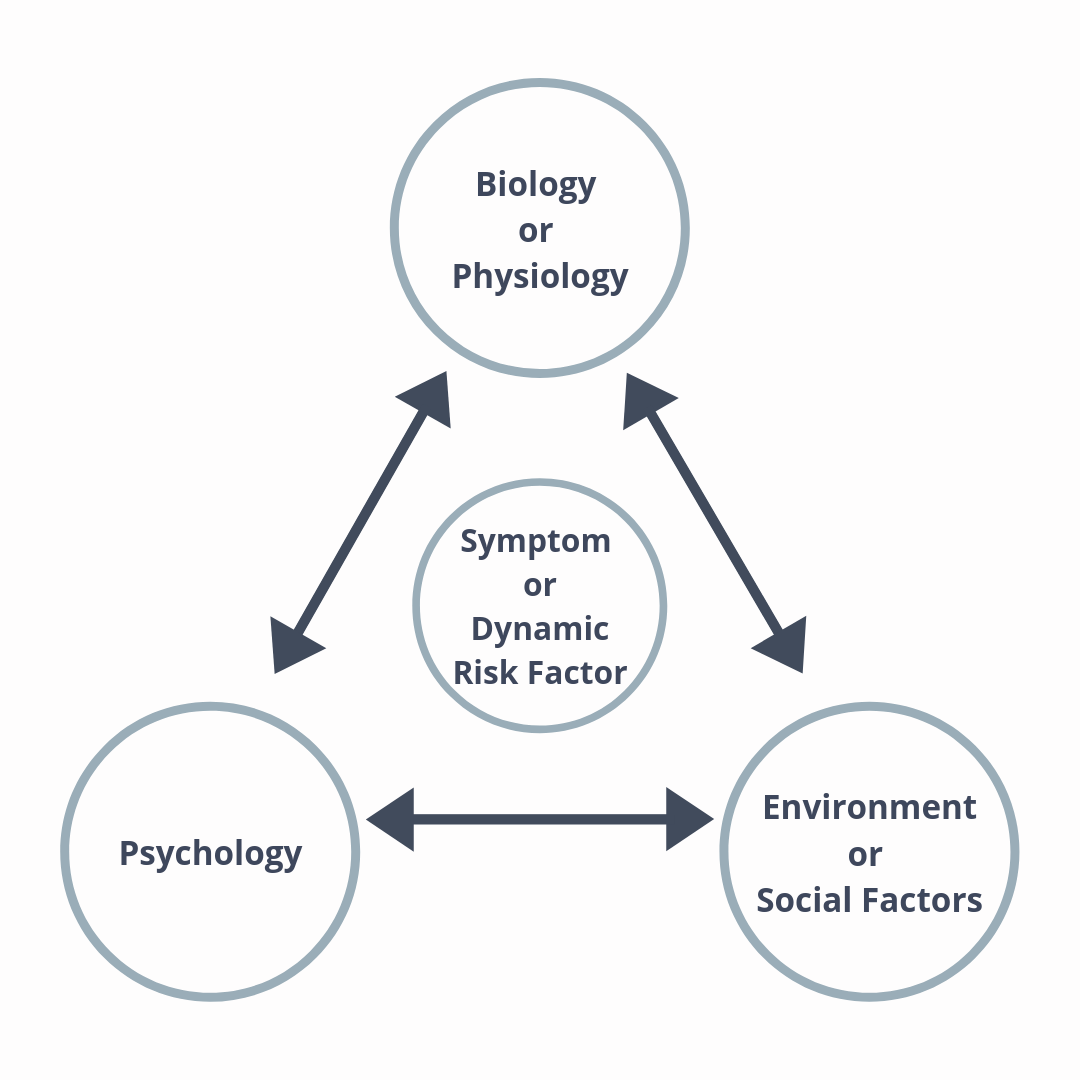 What is the Biopsychosocial Model? How does it apply to Rehabilitation Treatment?