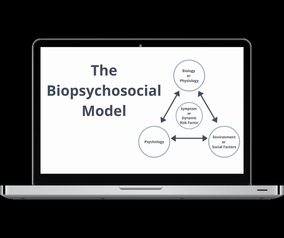 Biopsychosocial Course