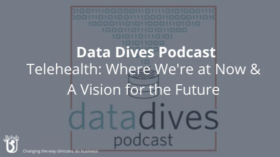 Data Dives Podcast Appearance: Telehealth